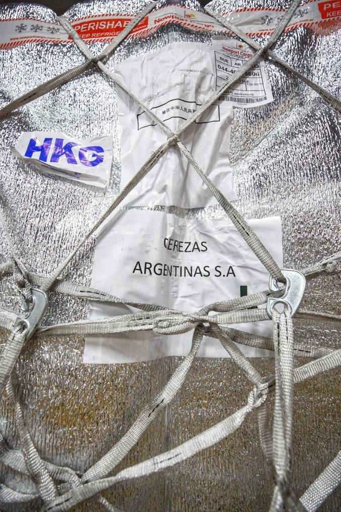 primera exportación de cerezas a china por avión (1)