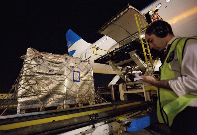 primera exportación de cerezas a china por avión. (1)